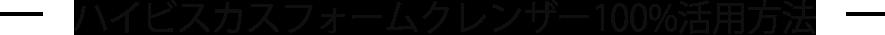ハイビスカスフォームクレンザー100%活用方法