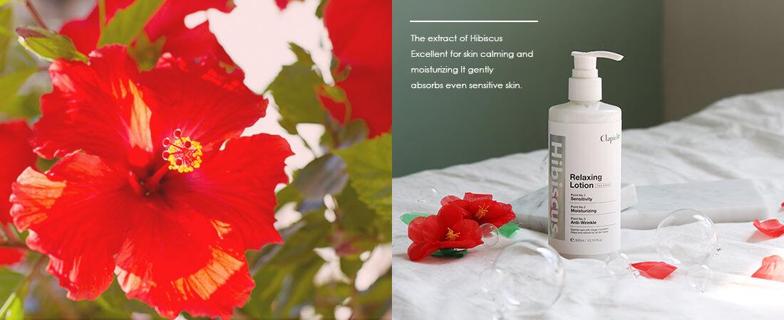 Hibiscus ハイビスカス リラクシング オーガニック ライン