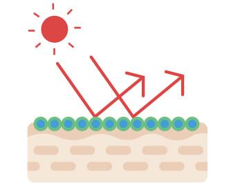 UV 二重遮断技術