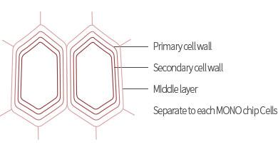 栄養成分100%を肌に届ける核心技術、高濃縮セルアンプル技術適用